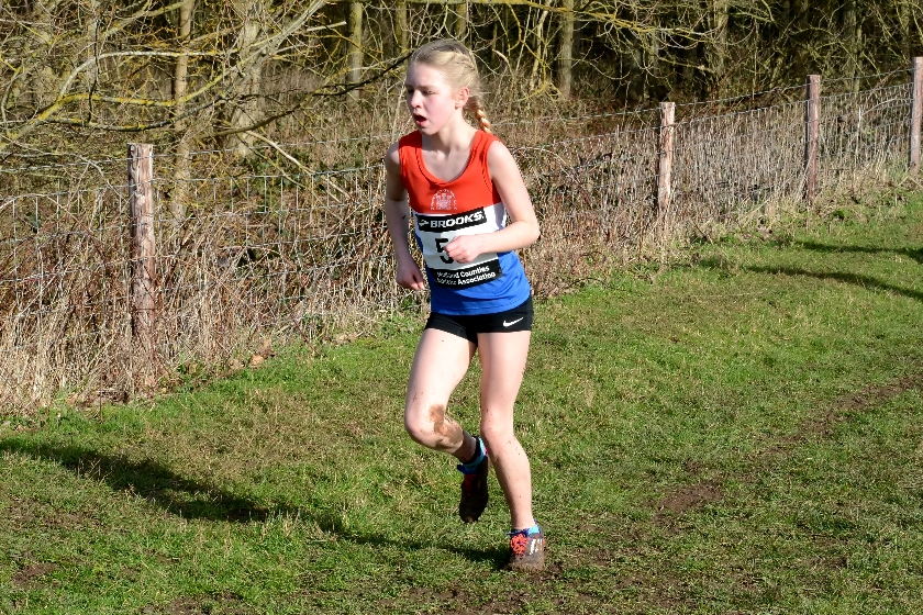 Midlands Cross Country Championships – 30/1/2016